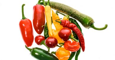 How To Overwinter Peppers