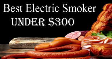 Buying Guide: Best Electric Smoker under $300
