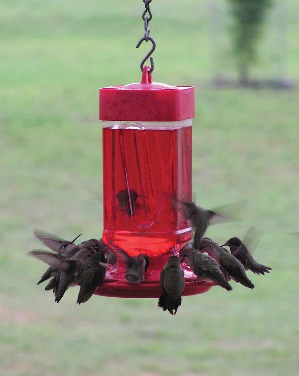 19 First Nature Hummingbird Feeder